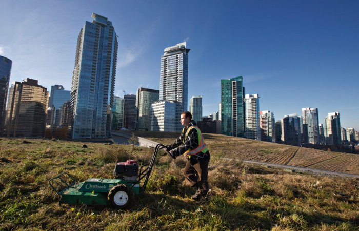 Landscaper Konrad Tremblay mows the grass during its annual grooming on the roof of the Vancouver Convention Centre in Vancouver